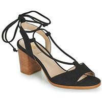 Shoes Women Sandals San Marina ANANDO/VEL Black