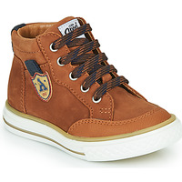 Shoes Boy High top trainers GBB NATHAN Brown