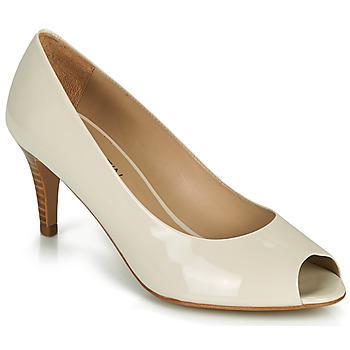 Shoes Women Court shoes JB Martin PARMINA Grey