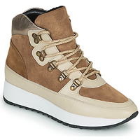 Shoes Women High top trainers JB Martin COURAGE Brown