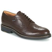 Shoes Men Derby shoes Pellet NORMAN Brown