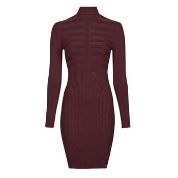material Women Short Dresses Morgan RMENTO Bordeaux