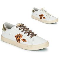 Shoes Women Low top trainers Le Temps des Cerises AUSTIN White / Gold