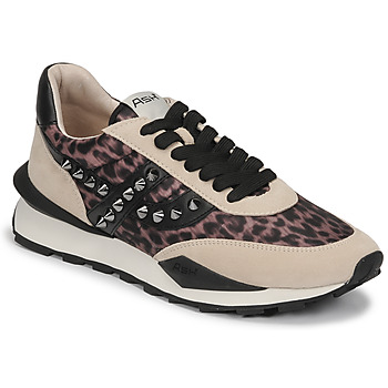 Shoes Women Low top trainers Ash SPIDER STUDS Beige / Black