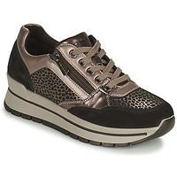 Shoes Women Low top trainers IgI&CO DONNA ANISIA Silver / Black