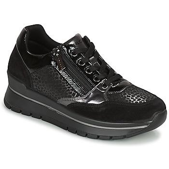 Shoes Women Low top trainers IgI&CO DONNA ANISIA Black