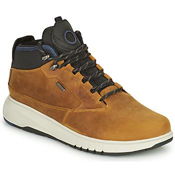 Shoes Men Mid boots Geox AERANTIS Camel