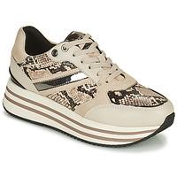 Shoes Women Low top trainers Geox KENCY Beige