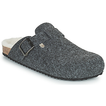 Shoes Women Slippers Geox BRIONIA Grey