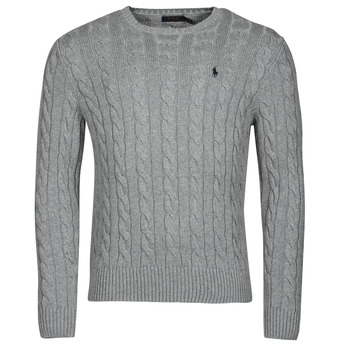material Men jumpers Polo Ralph Lauren SERINA Grey