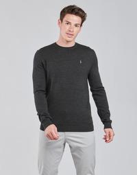 material Men jumpers Polo Ralph Lauren AMIRAL Grey