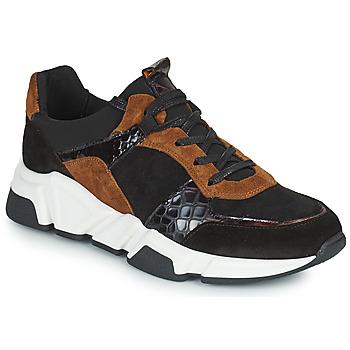 Shoes Women Low top trainers Regard KENO Black / Brown