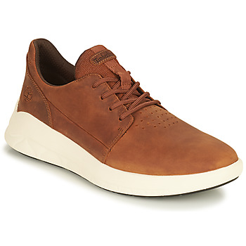 Shoes Men Low top trainers Timberland BRADSTREET ULTRA LTHR OX Brown
