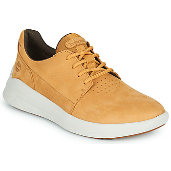 Shoes Men Low top trainers Timberland BRADSTREET ULTRA LTHR OX Beige