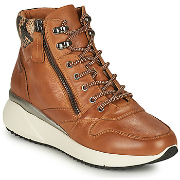 Shoes Women High top trainers Pikolinos SELLA Brown
