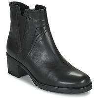 Shoes Women Ankle boots Gabor 7280417 Black