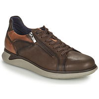 Shoes Men Low top trainers Fluchos COOPER Brown