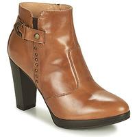 Shoes Women Ankle boots NeroGiardini ASPERGO Cognac
