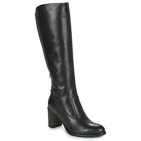 Shoes Women Boots NeroGiardini HARICOTO Black