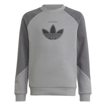 material Children sweaters adidas Originals DREZZ Grey