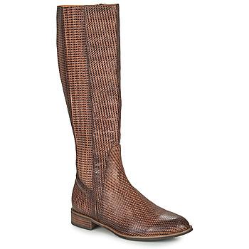 Shoes Women Boots Mam'Zelle SAPA Brown