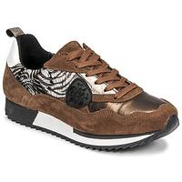 Shoes Women Low top trainers Philippe Morvan ROXA Brown / Black