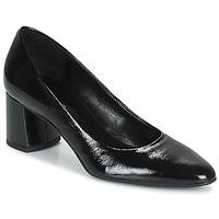Shoes Women Court shoes Betty London PANEA Black