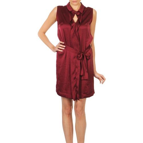 material Women Short Dresses Lola ROSE ESTATE Bordeaux