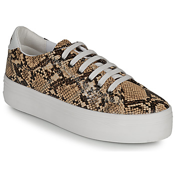 Shoes Women Low top trainers No Name PLATO M Brown