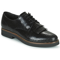 Shoes Women Derby shoes Minelli SOLENNA Black