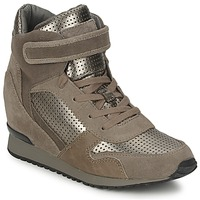 Shoes Women High top trainers Ash DRUM Brown / GOLD
