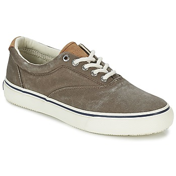 Low top trainers Sperry Top-Sider STRIPER CVO