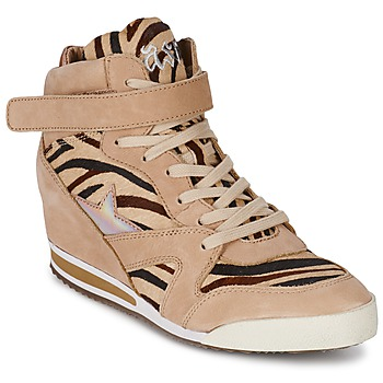 High top trainers Ash JAZZ