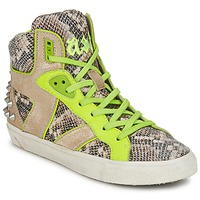 Shoes Women High top trainers Ash SONIC Python / Yellow