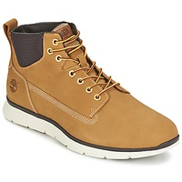 Shoes Men High top trainers Timberland KILLINGTON CHUKKA WHEAT Beige