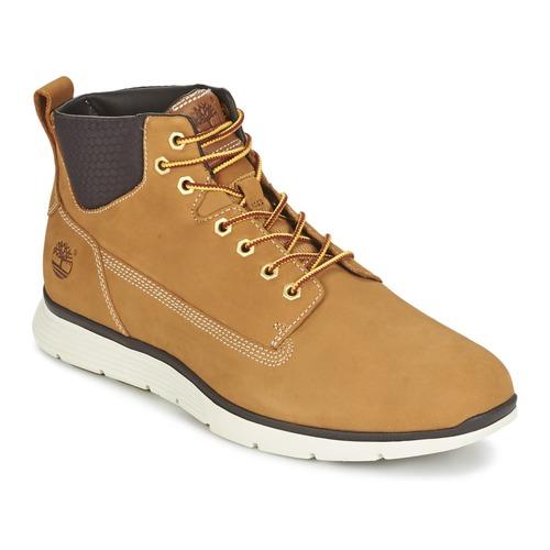Shoes Men High top trainers Timberland KILLINGTON CHUKKA WHEAT Beige