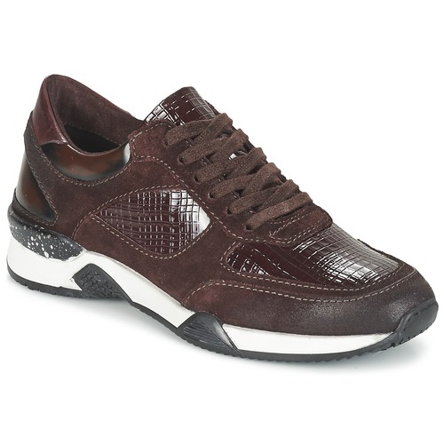 Shoes Women Low top trainers Dream in Green FARRICA Bordeaux