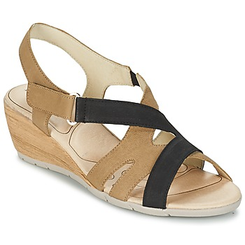 Shoes Women Sandals Rondinaud COLAGNE BEIGE / Black