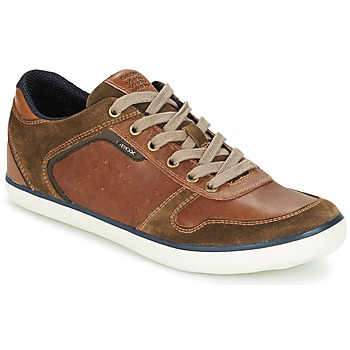 Shoes Men Low top trainers Geox BOX C Brown