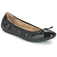 Shoes Women Ballerinas Geox D LOLA 2FIT C Black