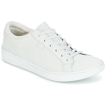 Shoes Women Low top trainers Keds ACE MONO Glacier / Granite