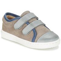 Shoes Boy Low top trainers Citrouille et Compagnie GOUTOU Grey / Taupe / Blue