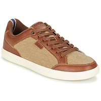 Shoes Men Low top trainers Kickers AART HEMP Brown / Beige
