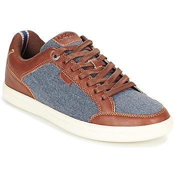 Shoes Men Low top trainers Kickers AART HEMP Brown / Blue