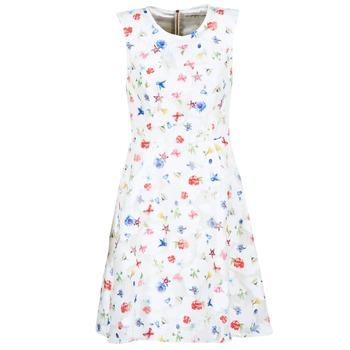material Women Short Dresses Derhy MAESTRIA White