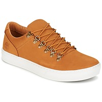 Shoes Men Low top trainers Timberland ADV 2.0 CUPSOLE ALPINE OX Brown