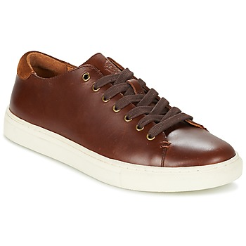Shoes Men Low top trainers Ralph Lauren JERMAIN Brown