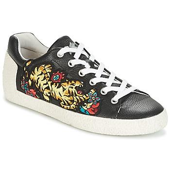 Shoes Women Low top trainers Ash NIAGARA Black