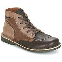 Shoes Women Mid boots Kickers LEGENDIKNEW Brown / Dark