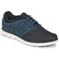 Shoes Men Low top trainers Timberland BRADSTREET F/L OXFORD Marine